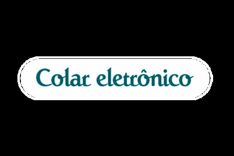 Colar Eletrônico: O uso pedagógico
